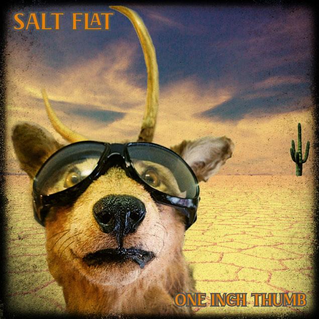 Salt Flat 'One Inch Thumb'